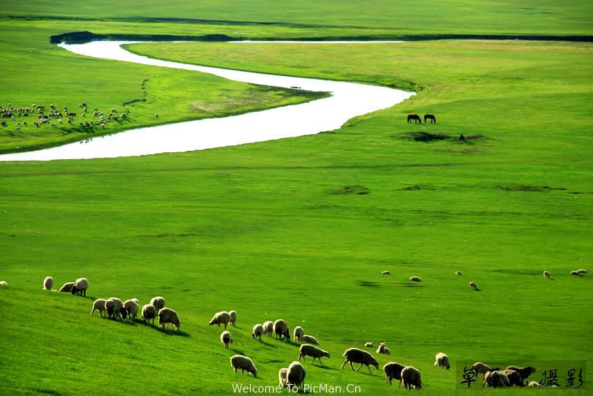 草原上,那条弯弯的河 - 宁静枫林 - 呼伦贝尔长城摄影旅游俱乐部