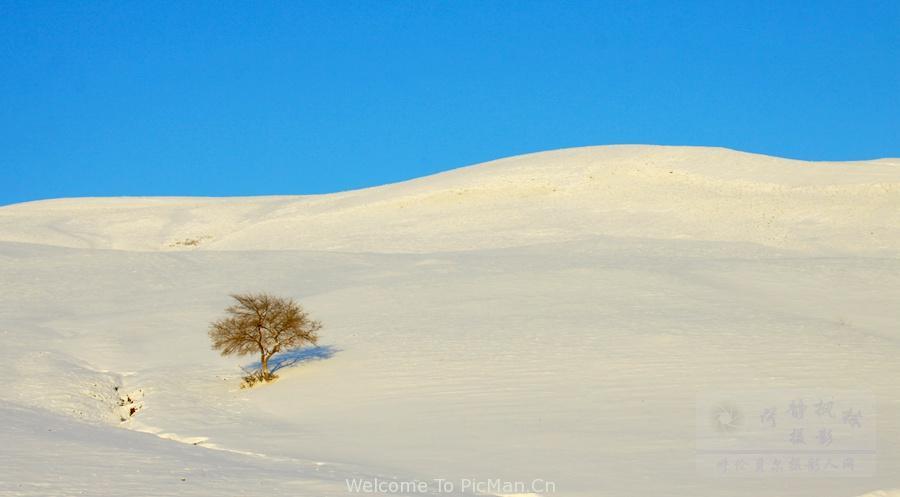 走进冰雪童话世界呼伦贝尔冬季越野摄影实战团 - 宁静枫林 - 呼伦贝尔长城摄影旅游俱乐部