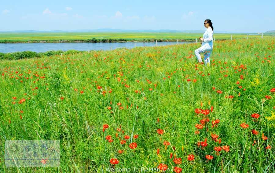 六月的期待——呼伦贝尔草原盛会那达幕风情摄影邀您同行 - 宁静枫林 - 呼伦贝尔长城摄影旅游俱乐部
